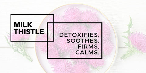 milk thistle: detoxifies, soothes, firms, calms.