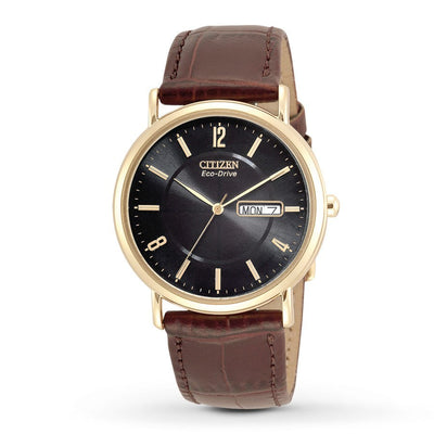 Citizen Eco-Drive Men's Gold-Tone Watch With Leather Strap