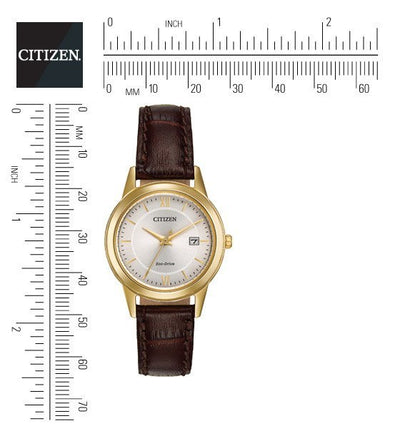 Citizen Eco-Drive Women's Gold-Tone Brown Strap Watch