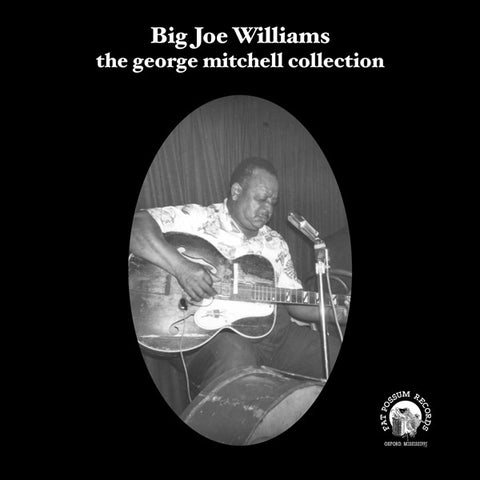 Big Joe Williams: George Mitchell Collection