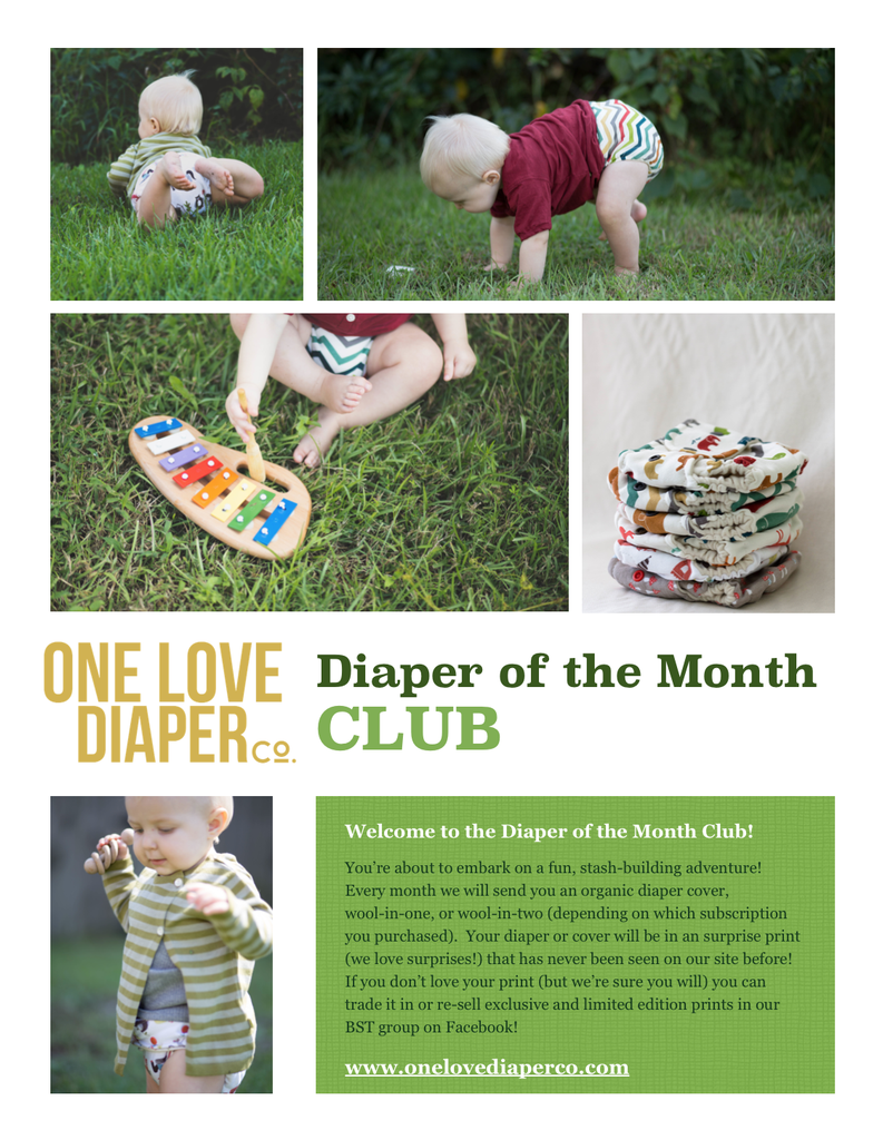 Diaper of the Month Club (3 Month - Oct/Nov/Dec 2017) - One Love Diaper Co.