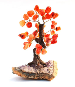 Natural Carnelian Crystal Stone Wire Wrapped Gemstone Tree 292g
