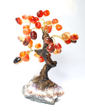 Load image into Gallery viewer, New! Unique Natural Orange Carnelian & Amethyst Base Crystal Stone Chips Gemstone Tree 323g