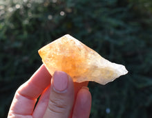 Load image into Gallery viewer, New! Citrine Crystal Stone Polished Point Raw Chunk Piece