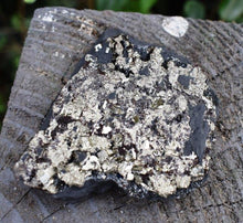 Load image into Gallery viewer, New! Natural & Unique Shungite & Pyrite Rare Protection Crystal Inc Luxury Gift Box