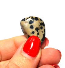 Load image into Gallery viewer, New! Natural Dalmation Jasper Crystal Tumble Stone Gift Wrapped