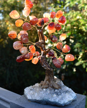 Load image into Gallery viewer, New! Unique Natural Orange Carnelian & Amethyst Base Crystal Stone Chips Gemstone Tree Gift Boxed