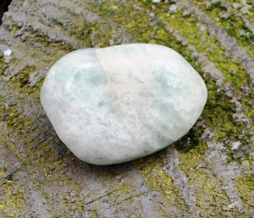 Natural Aquamarine Crystal Tumble Stone Gift Wrapped