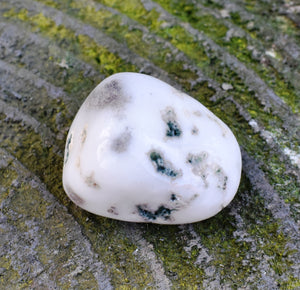 Moss Agate Natural Polished Crystal Tumble Stone