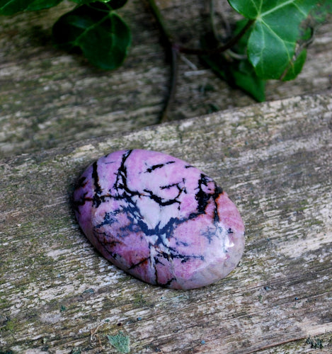 Rhodonite Crystal Palm Stone Gift Wrapped