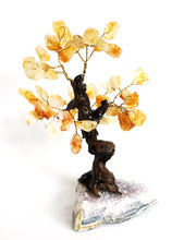 Load image into Gallery viewer, Natural Citrine And Amethyst Crystal Stone Gemstone Tree Unique Piece