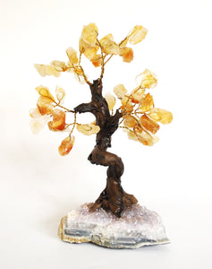 Natural Citrine And Amethyst Crystal Stone Gemstone Tree Unique Piece