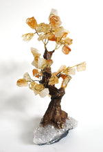 Load image into Gallery viewer, Natural Citrine And Clear Quartz Crystal Stone Gemstone Tree Unique Piece
