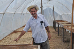 COMSA producer and drying racks in Honduras | Bean North Coffee Roasting Co. Ltd.