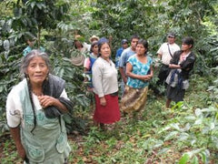 Producers in the Mexican coffee fields | Bean North Coffee Roasting Co. Ltd.