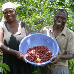 Producers at Sopacdi in DR Congo | Bean North Coffee Roasting Co. Ltd.
