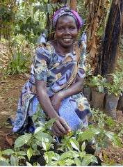 Female producer with coffee plants at the Ugandan Gumutindo cooperative | Bean North Coffee Roasting Co. Ltd.