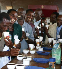 Cupping with the Ugandan producers from the Gumutindo cooperative | Bean North Coffee Roasting Co. Ltd.