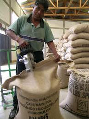 Preparing coffee for shipping at the APECAFORM producer cooperative, Guatemala | Bean North Coffee Roasting Co. Ltd.