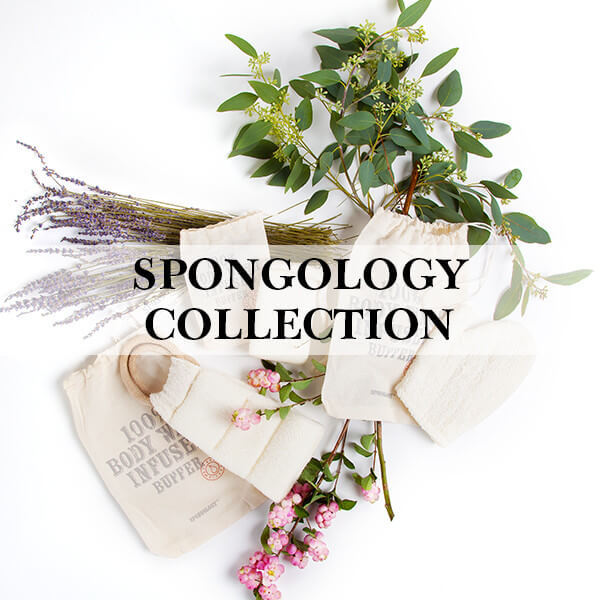 Spongology Collection