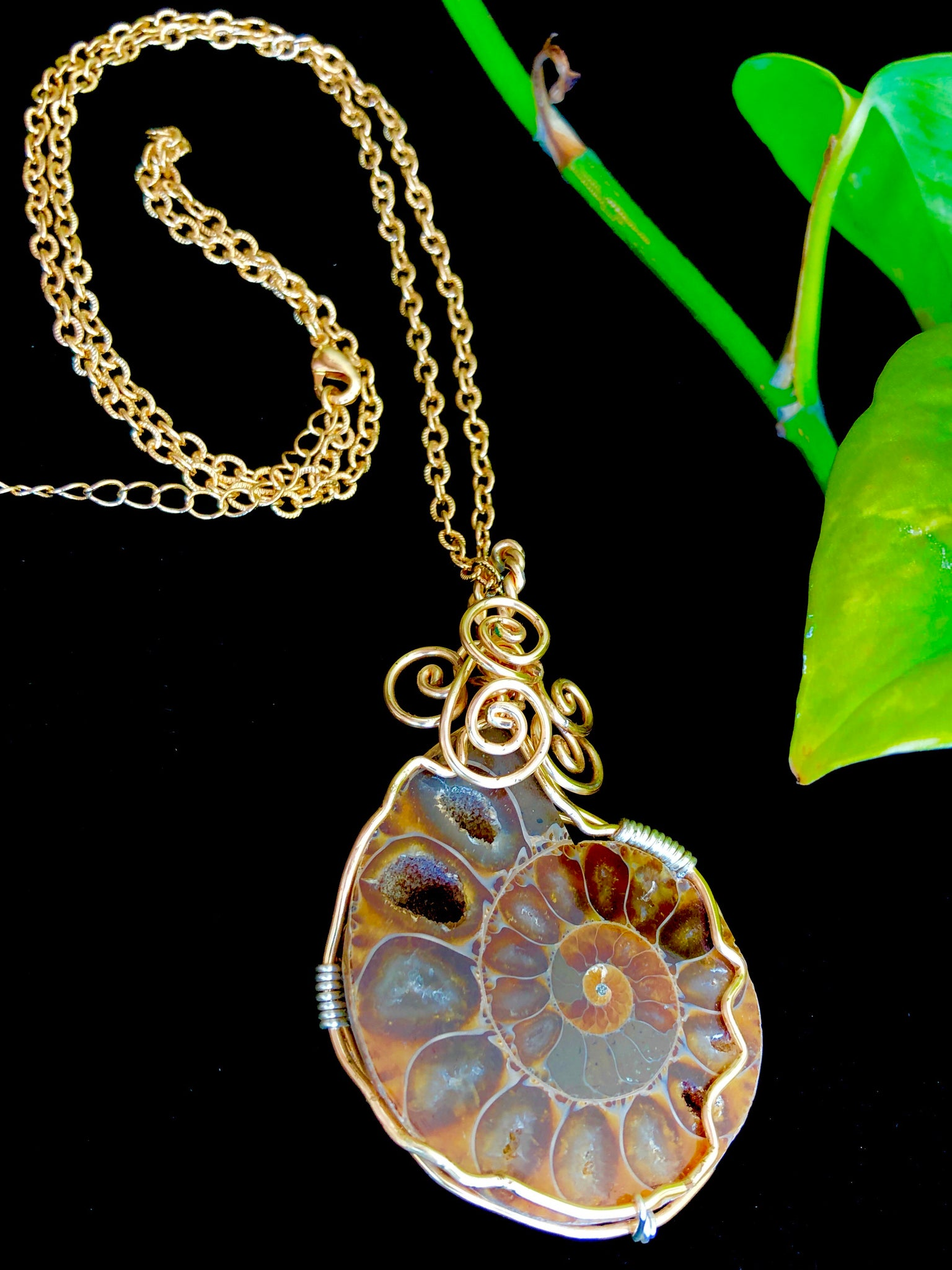 Fossilized Ammonite Wrapped in 14kt Gold