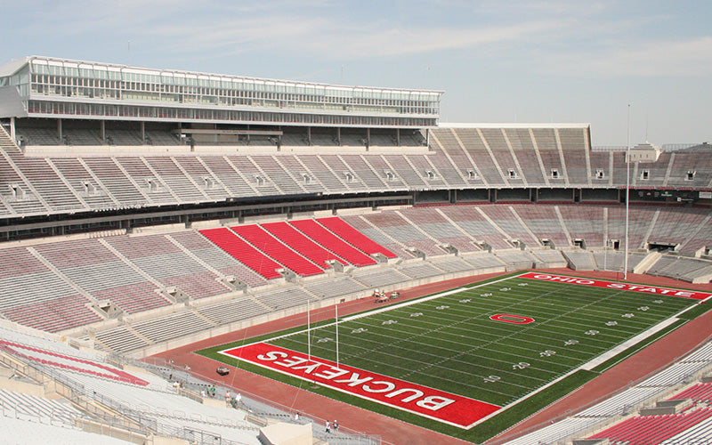 Ohio Stadium Buckeye
