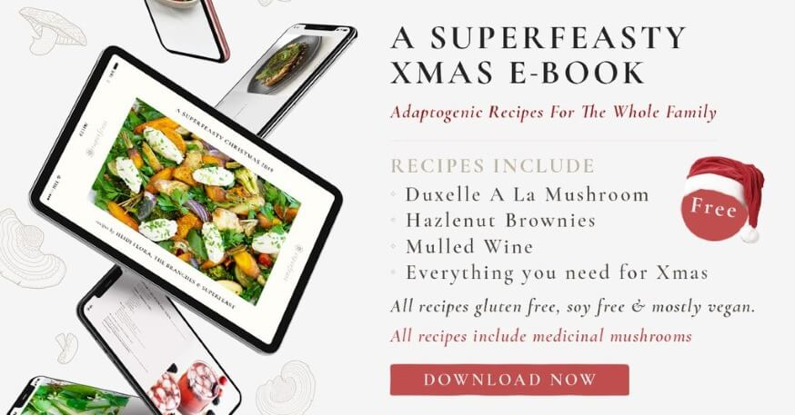 this eBook has a Christmassy-feel