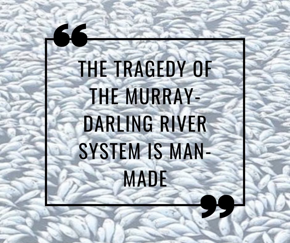 The tragedy of the Murray- Darling River system is man-made.