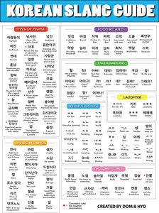 Korean Slang Guide Poster (shipping included in the price)