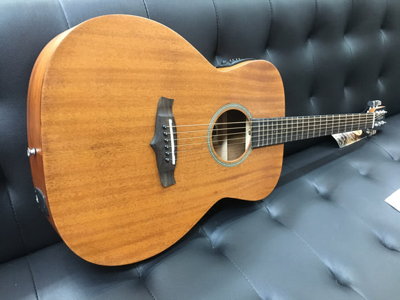 Tanglewood TW2ASEWC all solid timber guitar