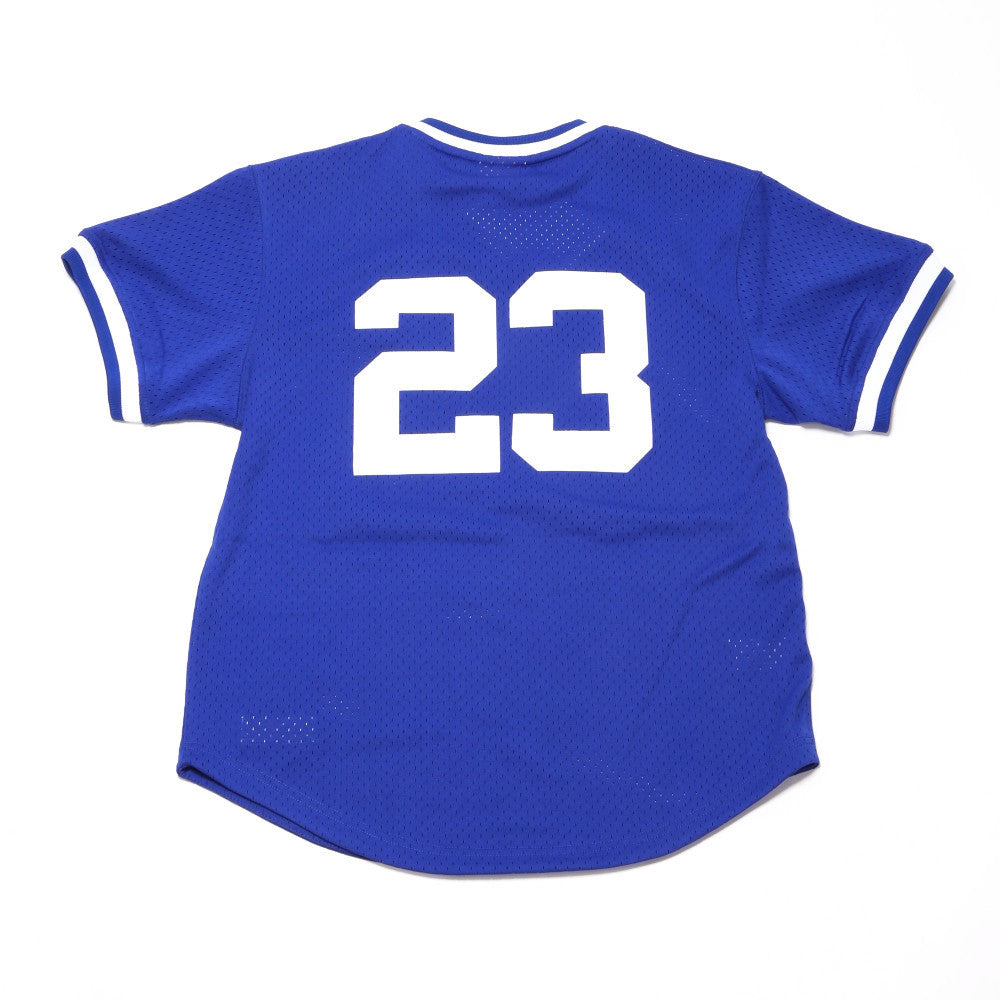 Authentic Mesh BP Jersey - Ryne Sandberg #23 (Chicago Cubs)