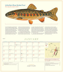 Trout of North America 2018 Calendar
