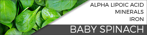 Baby Spinach Vital 4U Blog