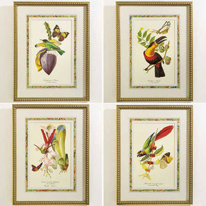 Exotic Bird Prints