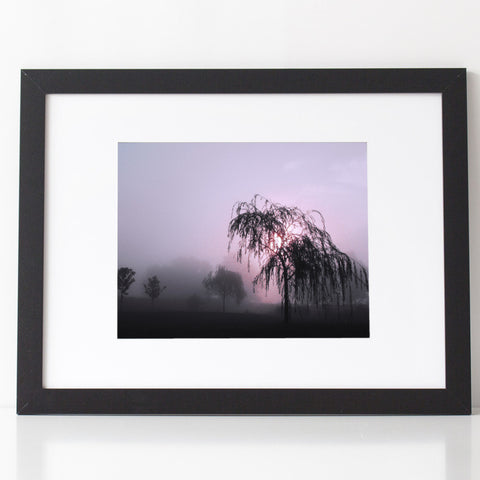 Art Print - Willow Tree in the Mist