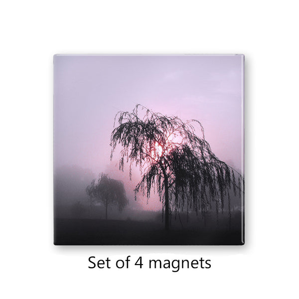 Weeping Willow Tree Magnet Set