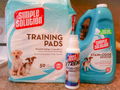 Pet Stains and Odors? I Have Found the Simple Solution!