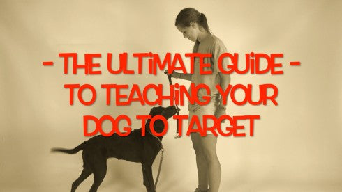 The Ultimate Guide to Target Training