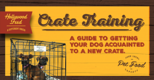 Crate Training Guide: A Guide to Getting Your Dog Acquainted to a New Crate