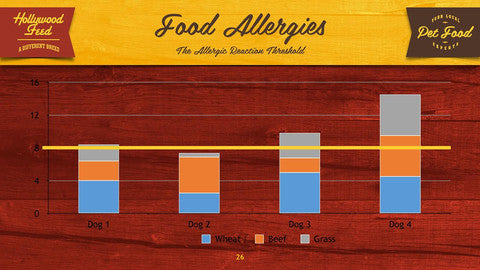 What are Food Allergies and How Do I Stop Them?