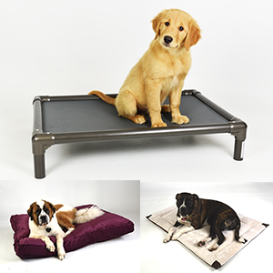 All Other Pet Beds