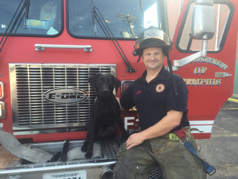 Dean and a firefighter dogs need jobs