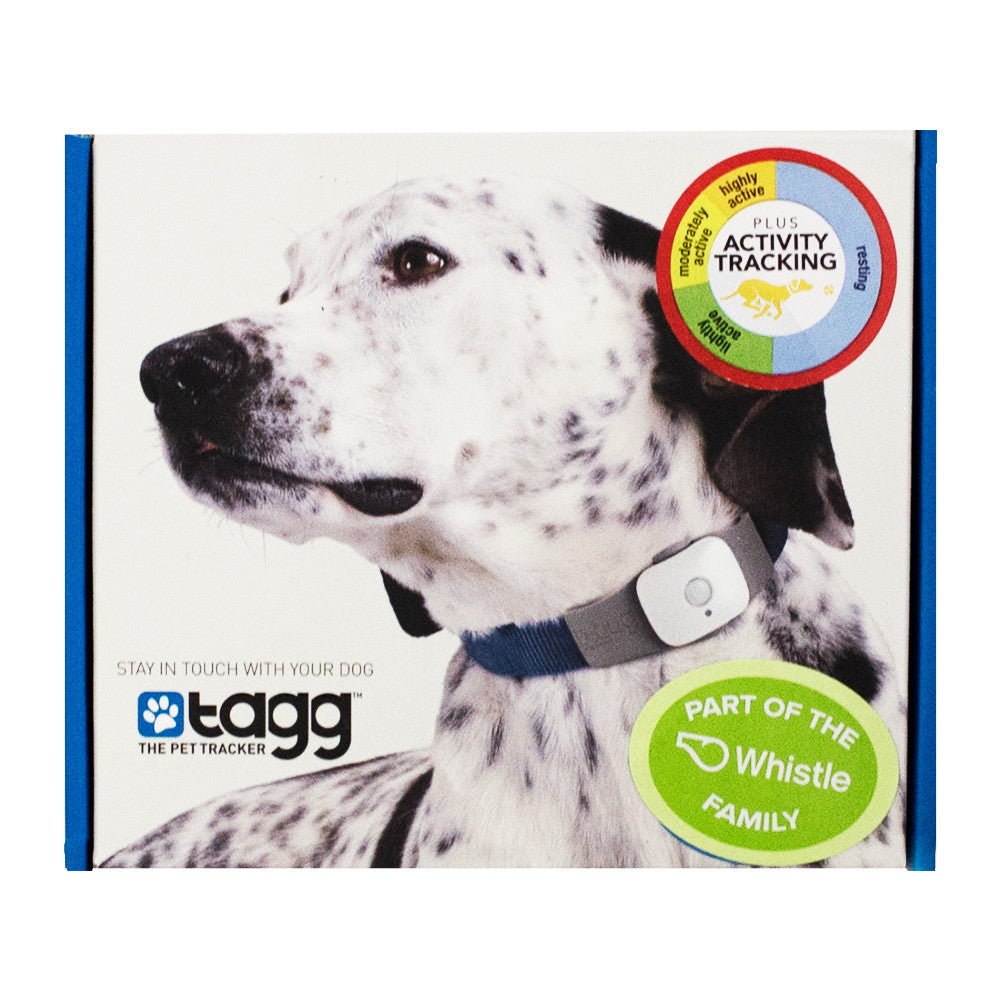 Whistle -Tagg GPS Pet Tracker – Hollywood Feed
