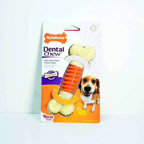 Hollywood Feed - Nylabone Dental PRO Action Chew - Bacon - Medium - Chew