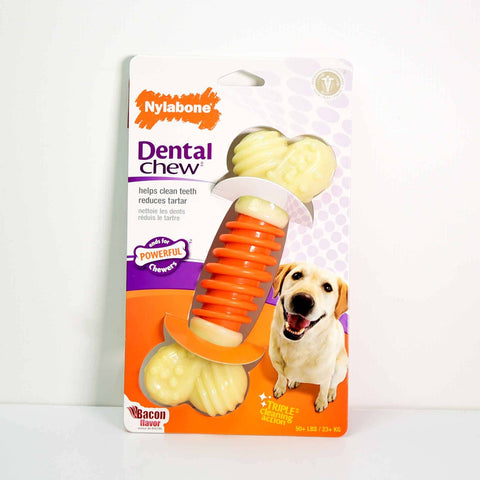 Hollywood Feed - Nylabone Dental PRO Action Chew - Bacon - Souper - Chew