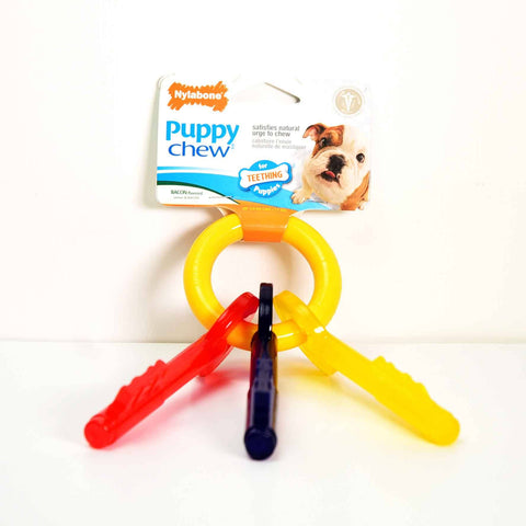 Hollywood Feed - Nylabone Puppy Teething Keys - Small - Chew