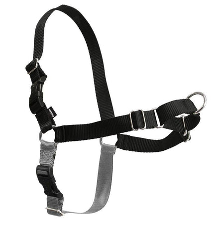 Easy Walk Harness - Black