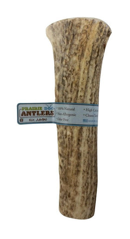 Hollywood Feed - Prairie Dog Elk Antler - Antler - 1