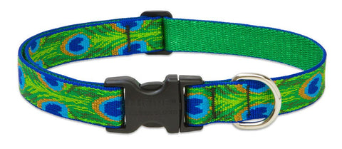 "Hollywood Feed - Lupine Adjustable Dog Collar (Large Dog) - Tail Feathers - 1"" - Flat Collar (Adjustable)"