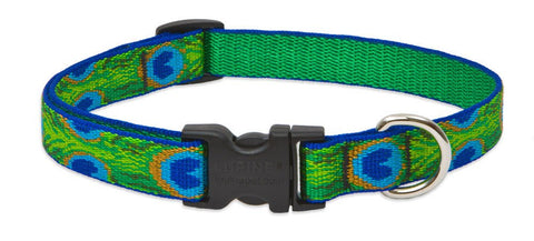 "Hollywood Feed - Lupine Adjustable Dog Collar (Medium Dog) - Tail Feathers - 3/4"" - Flat Collar (Adjustable)"